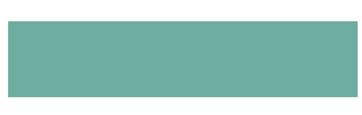 MSP MOBIL